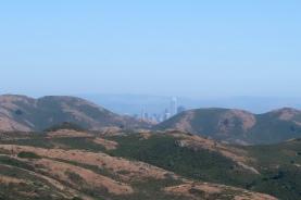 A peek of San Francisco